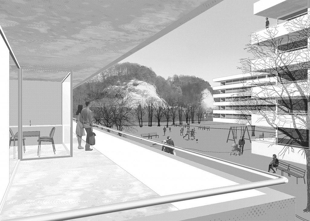 Hofbild weg Burgdorf (Jomini Zimmermann Architekten)